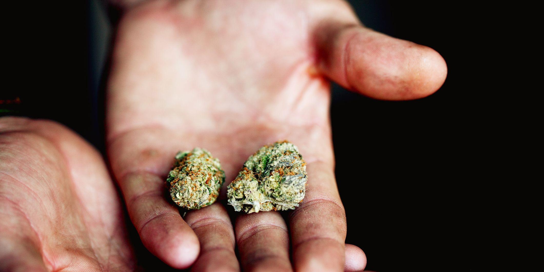 Cropped Image Of Hands Holding Marijuana