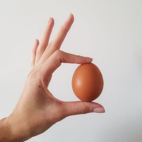 Cropped Image Of Woman Holding Egg Against White Wall