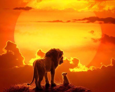 關於真人版《獅子王》的5大經典片段,還有你沒發現的這些細節!