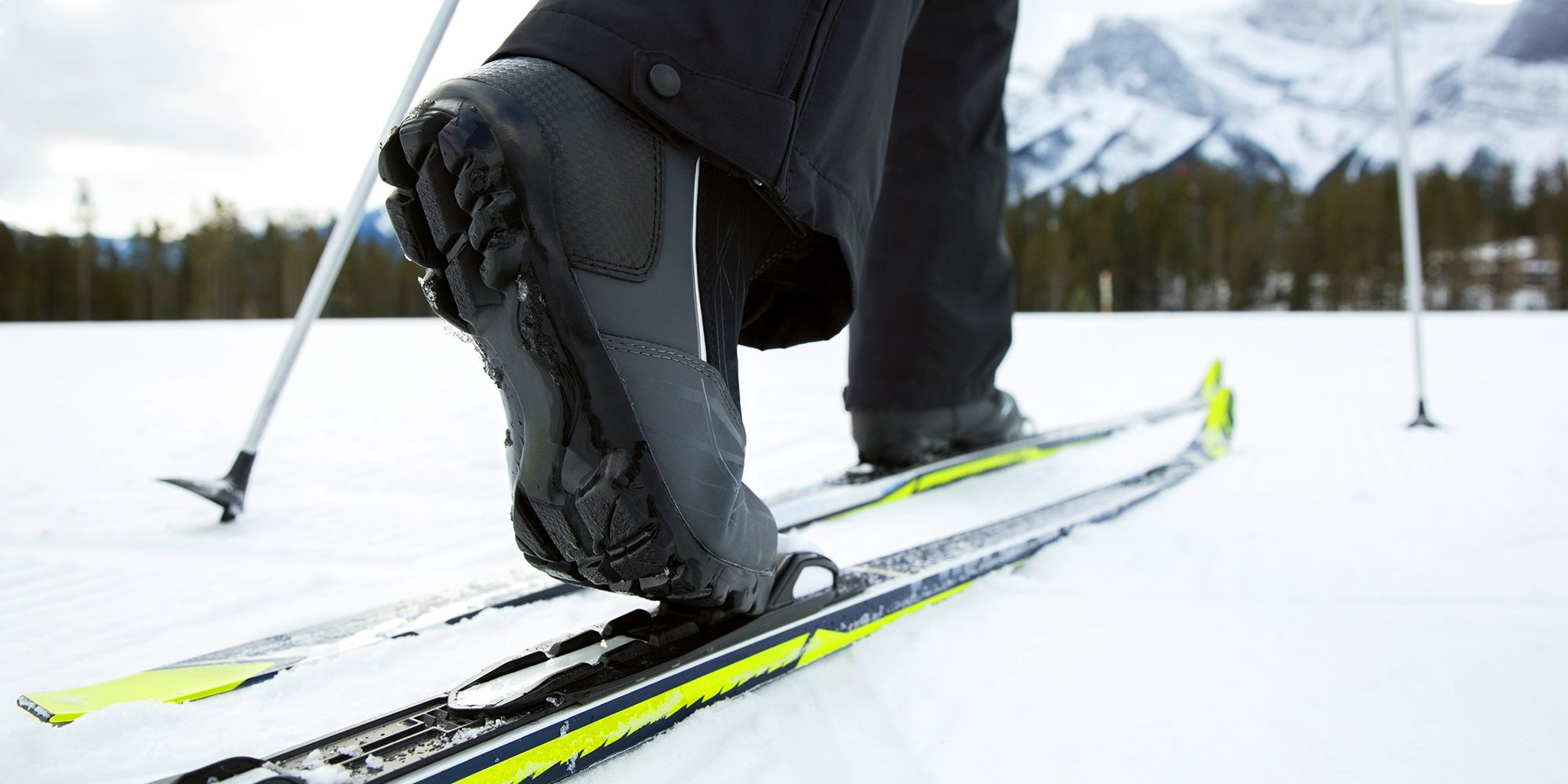 5 Best Cross Country Skis for Beginners   Types Of Cross Country Skis   Cross Country Skis Sizing