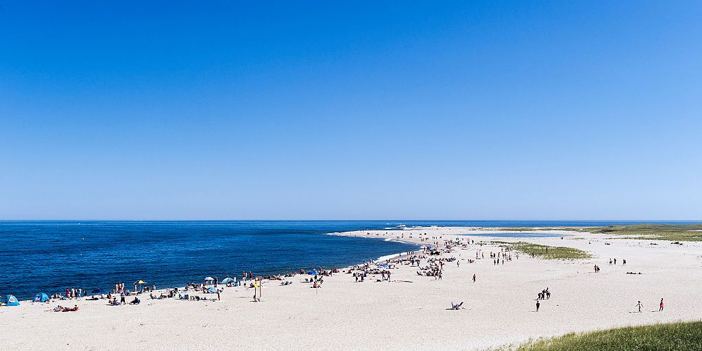 On Cape Cod, Locals and Summer Folks Have Long Leaned on Each Other. Now There Is Only Fear.