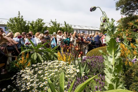 Crowds Visit Chelsea Flower Show In London