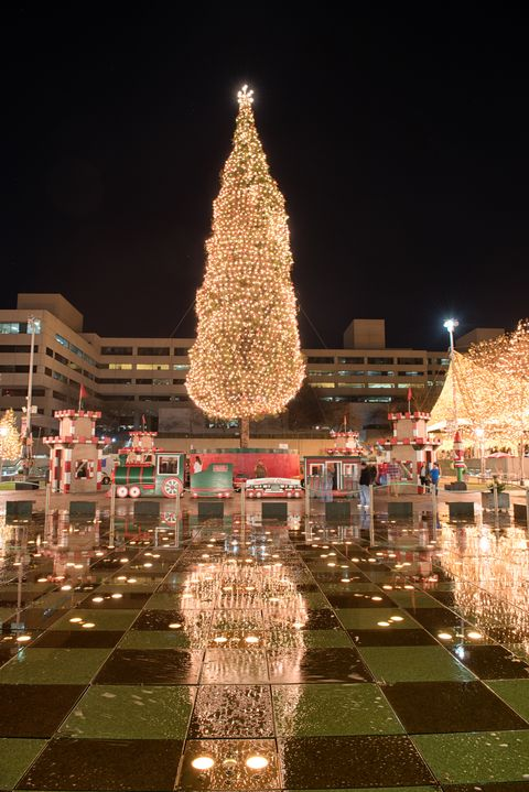 Iconic Christmas Trees In Every State Best Christmas