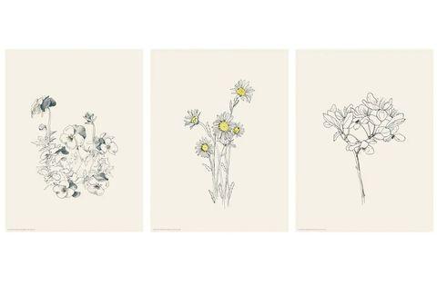 Lámina de flores BILD de IKEA