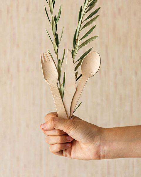 Vajilla desechable biodegradable de caña de azúcar y madera