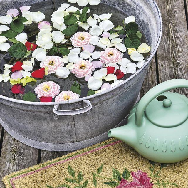 cubo de cinc con flores en agua