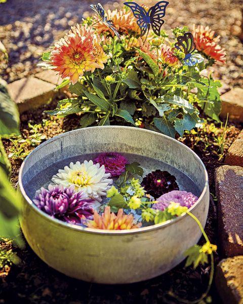 cuenco con agua y flores en el jardín