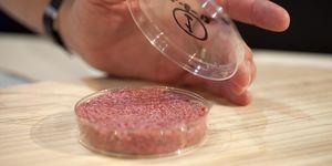 Kweekvlees duurzaam - Kweekvlees is het vlees van de toekomst
