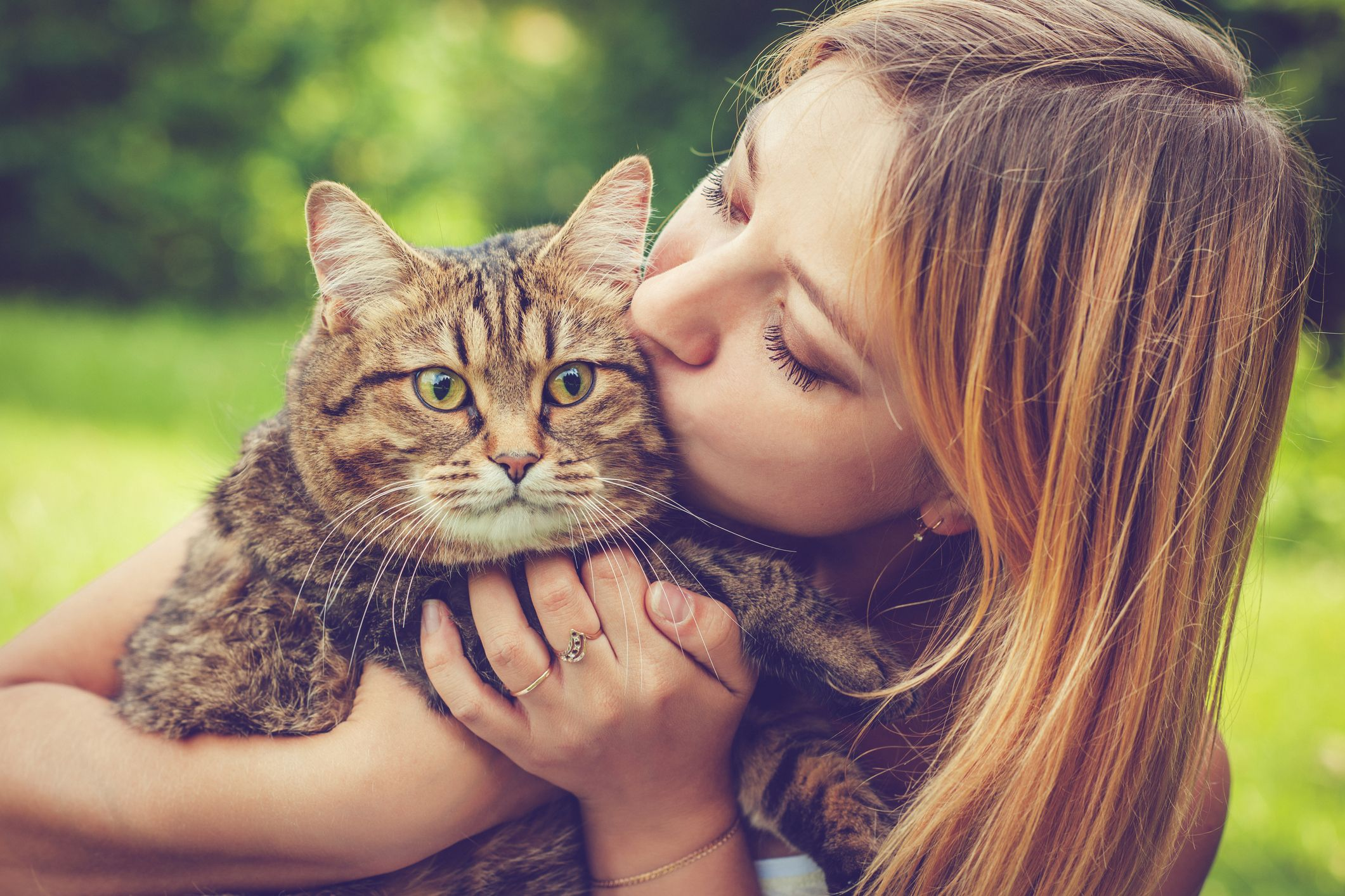 """11 Cute Cat Breeds That Are Sure to Make You Go """"Awww"""""""