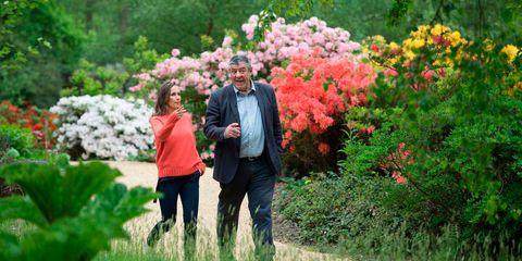Nature, Photograph, Natural landscape, Flower, Garden, Plant, Botany, Botanical garden, Tree, Shrub,