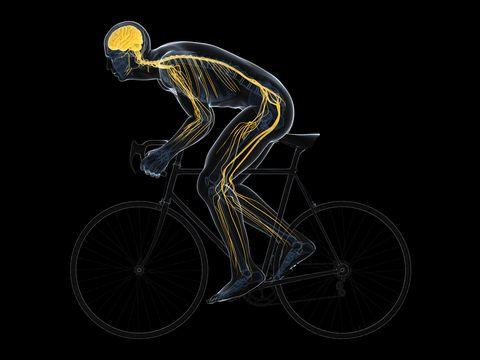 cyclist, artwork