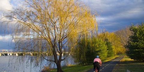 Cyclist pedaling down bike trail next to the Potomac at dawn