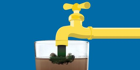 Water, Plant, Tap,