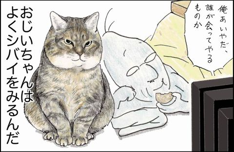 Cat, Small to medium-sized cats, Felidae, Whiskers, Cartoon, Domestic short-haired cat, Snout, Carnivore, Organism, Asian,