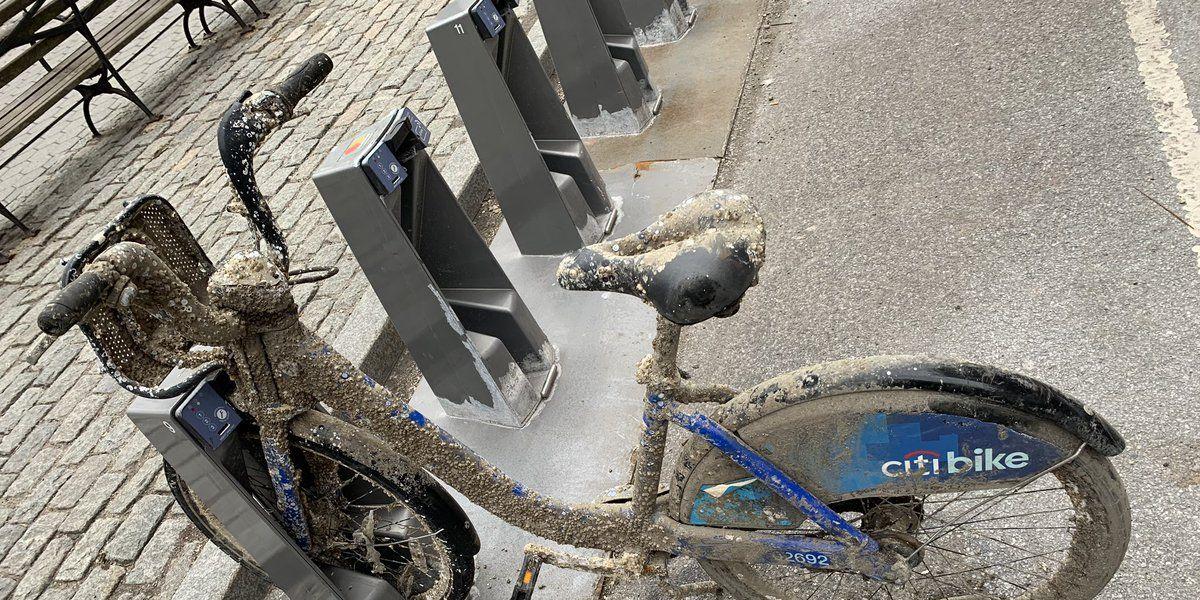 Citi Bike Barnacle