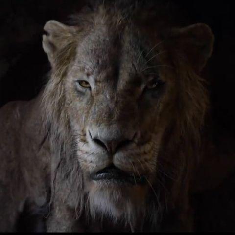The Lion King Trailer Backlash Scar Lion King Tweets