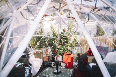 Greenhouse, Tree, Architecture, Plant, Room, Textile, Interior design, Floristry, Flower, Floral design,