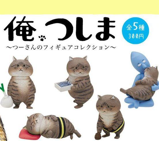 Cat, Felidae, Small to medium-sized cats, European shorthair, Animal figure, Domestic short-haired cat, Organism, Asian, Tabby cat, Font,