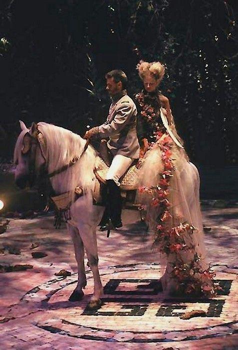 Horse, Stallion, Tradition, Performance, Scene,