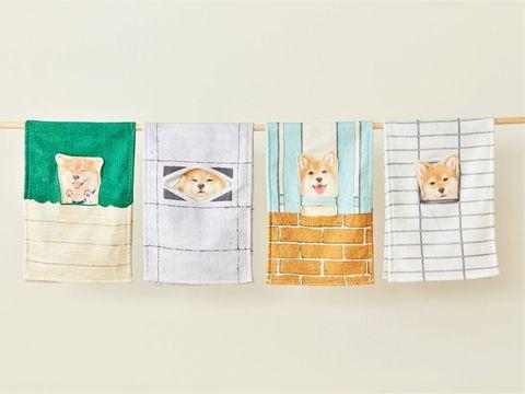 【ELLE怪奇物語】在浴室「偷偷看著你的小柴柴」毛巾!日本設計超療癒小物,讓擦手的瞬間好心動