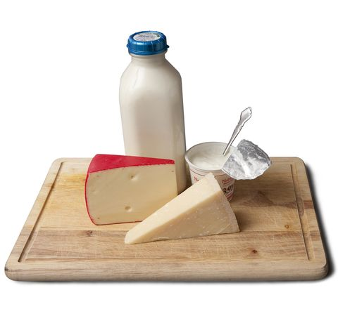 dairy food group
