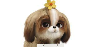 daisy mascotas 2