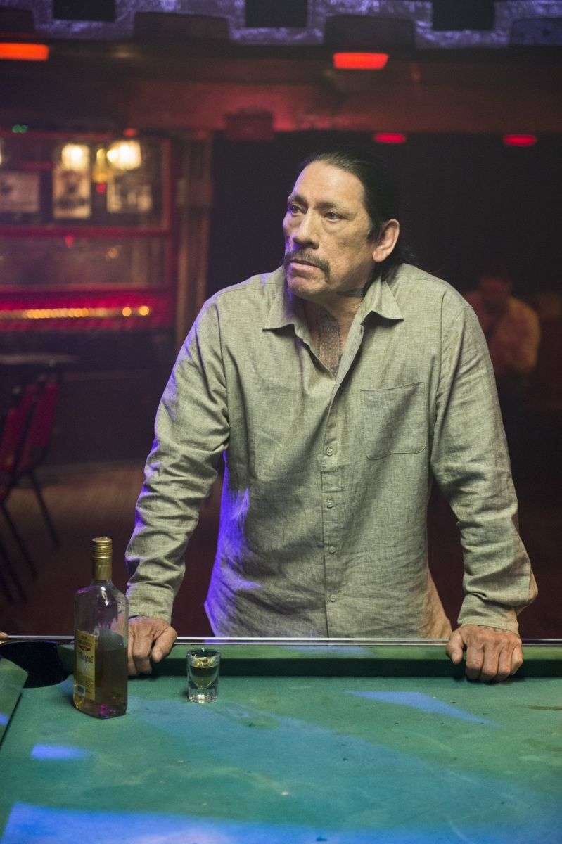 'Blue Bloods' and 'NCIS: LA' Actor Danny Trejo Saved a Child From an Overturned Car