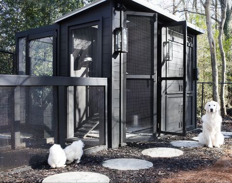 A Chic Black Chicken Coop