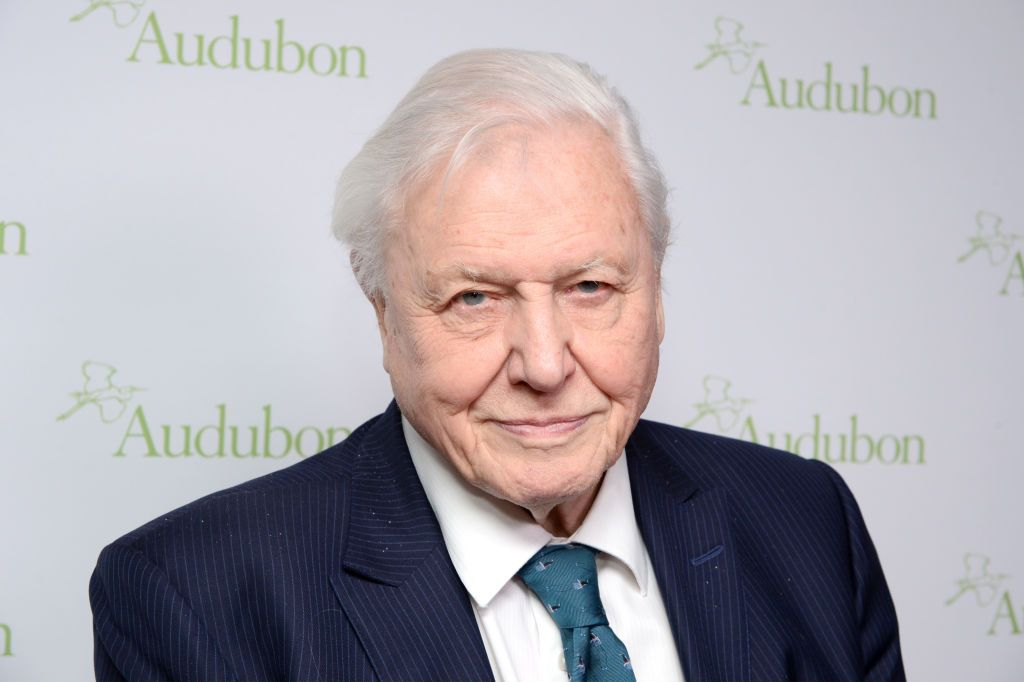 Sir David Attenborough's new BBC documentary this spring could be his most impactful yet