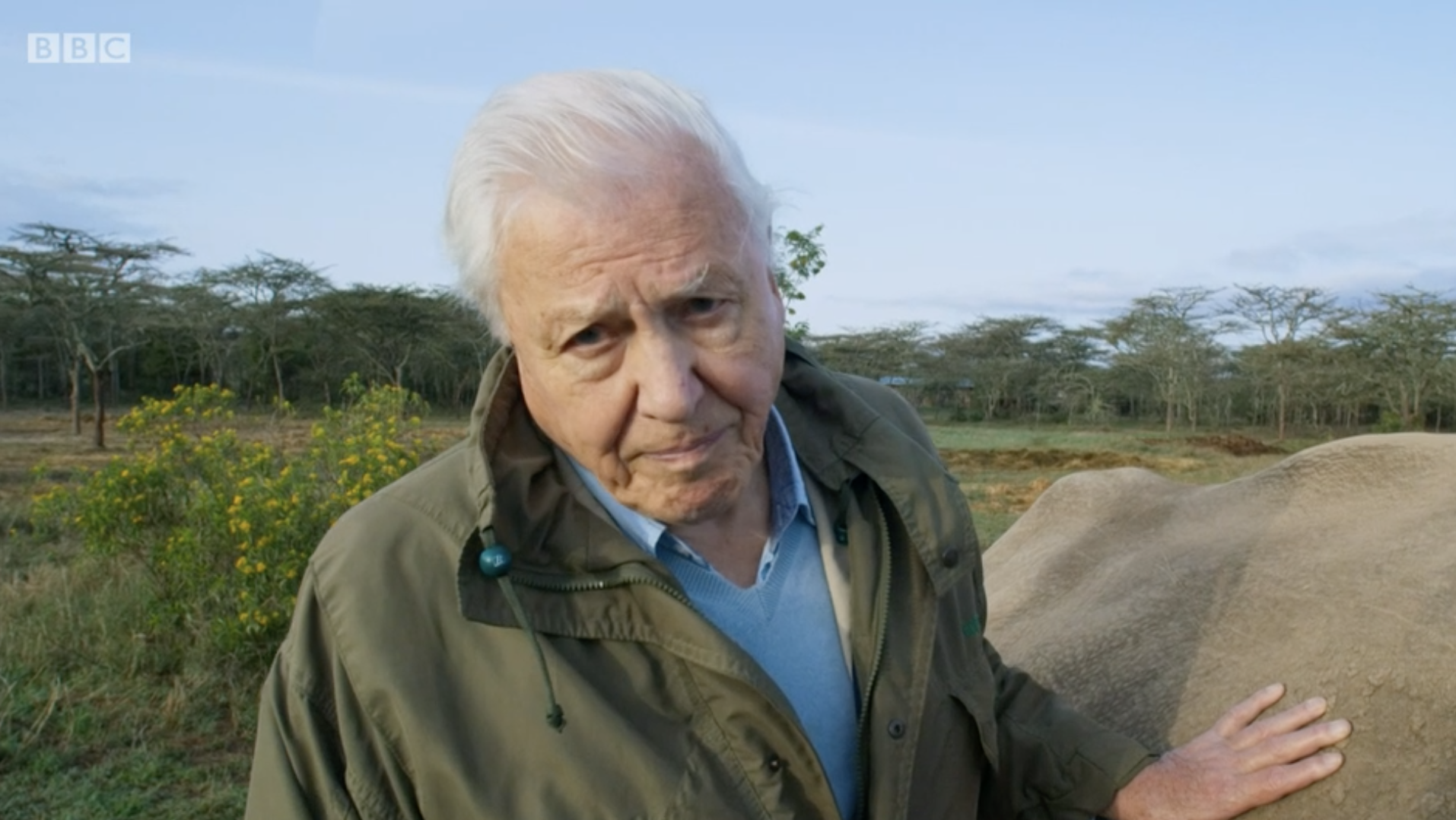 "David Attenborough fans make call for change after ""devastating"" last episode of Seven Worlds, One Planet"