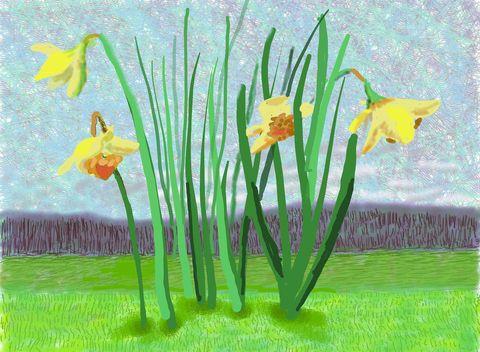 """david hockney""""no 118"""", 16th march 2020ipad painting© david hockney"""