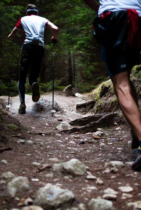 two men trail running in the forest