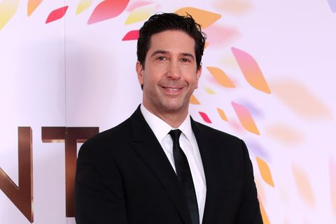 celebrity birthday famous david schwimmer