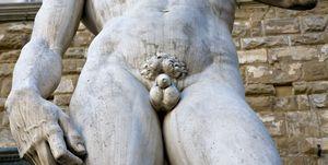 David Statue of Michelangelo Piazza della Signoria Florence Tuscany Italy
