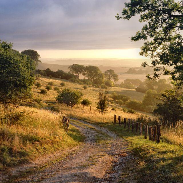 dawn sunshine in english countryside