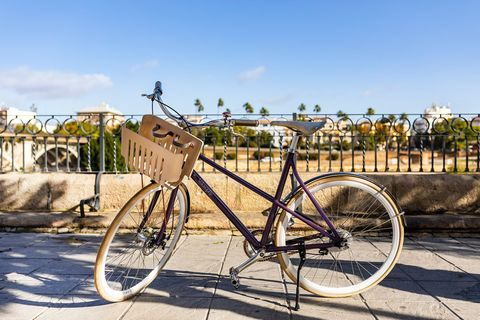 Bicycle, Bicycle wheel, Bicycle part, Vehicle, Bicycle saddle, Bicycle drivetrain part, Spoke, Bicycle frame, Road bicycle, Hybrid bicycle,