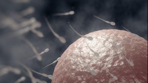 spermakwaliteit-verlagen