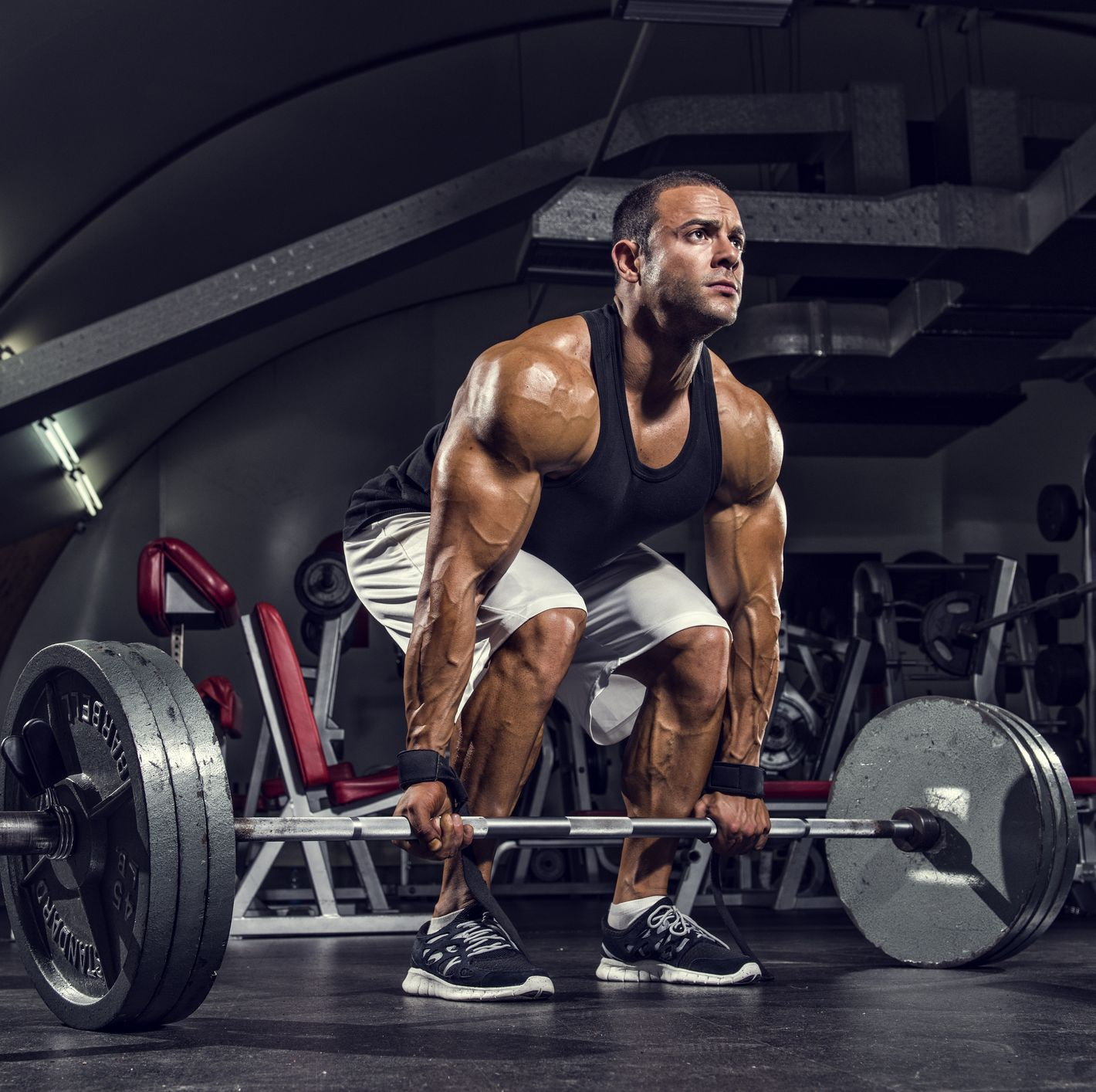 The 12 Essential Moves to Build Hamstring Muscle