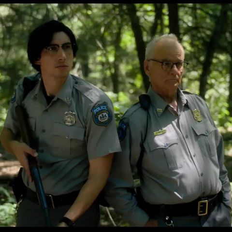 Natural environment, Uniform, Forest, Military person, Military, Woodland, Military uniform, Official, Adaptation, Plant,