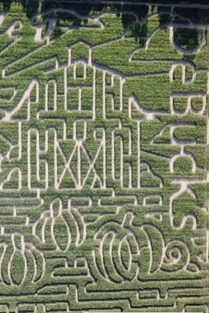 debucks corn maze near me