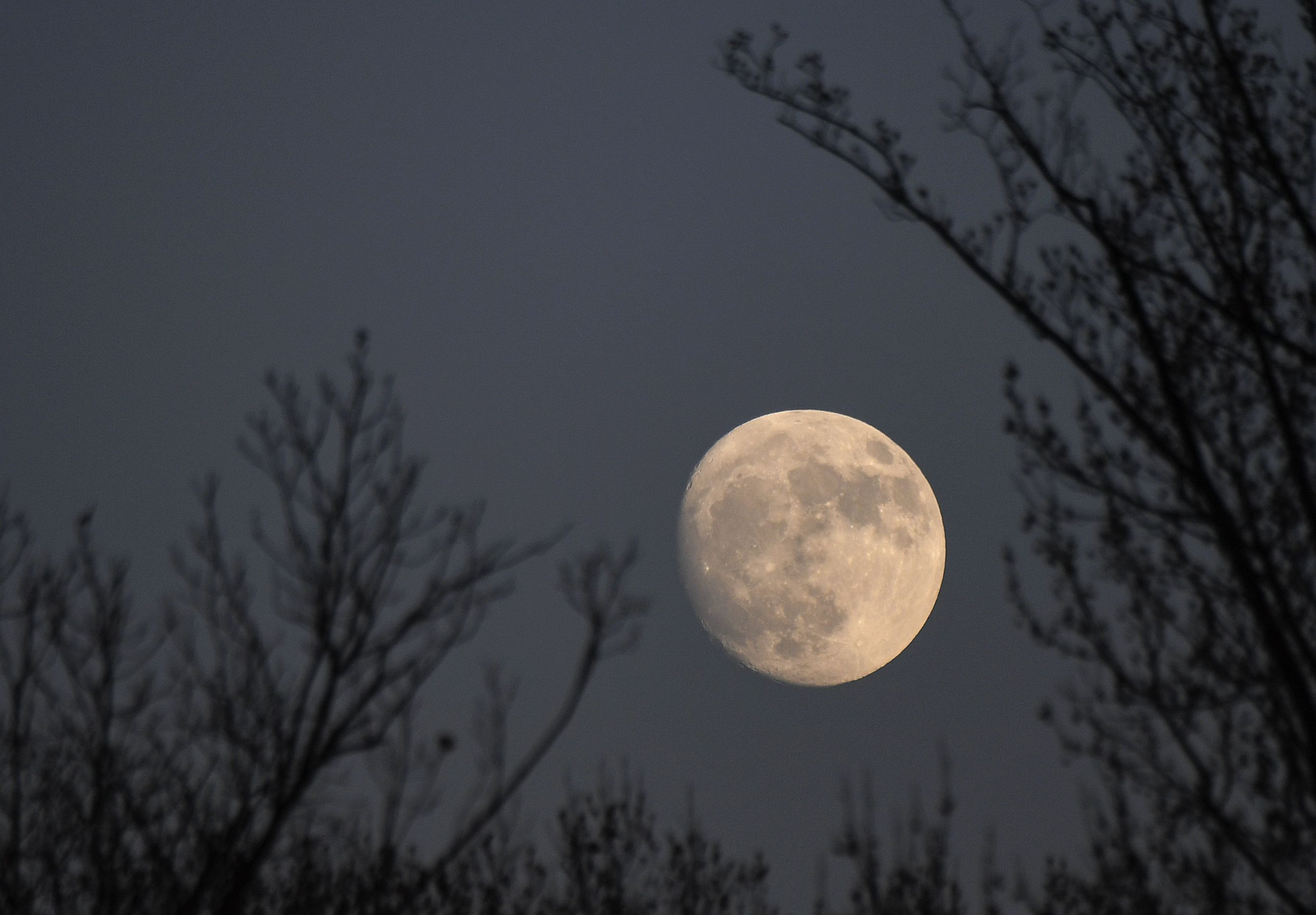 December's Cold Moon Is the Last Full Moon of This Decade