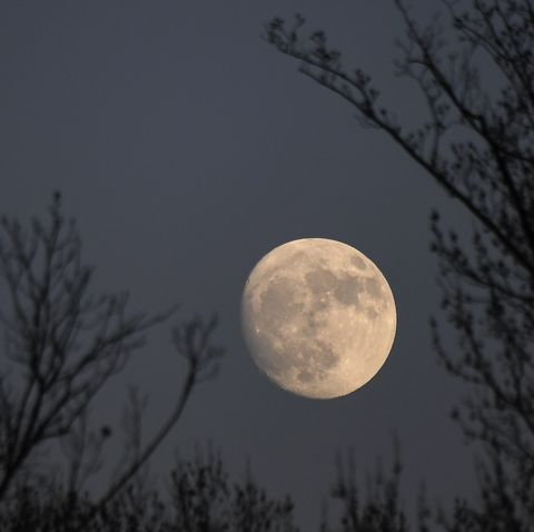 Decembers full moon is known as the Cold Moon