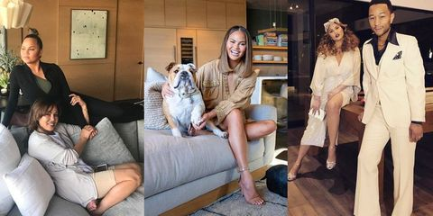Leg, Companion dog, Fashion, Fur, Room, Canidae, Sitting, Thigh,