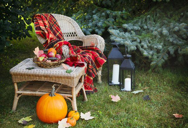 decorate autumn garden
