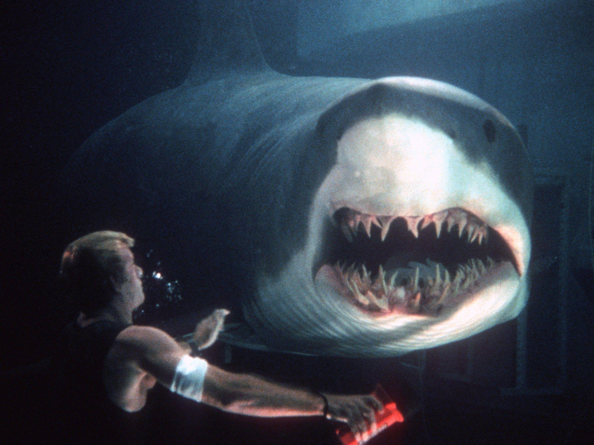 'Deep Blue Sea 3', en marcha gracias a Netflix