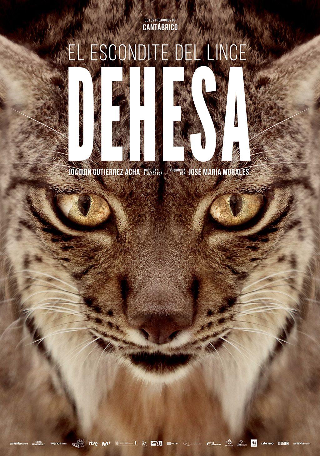 'Dehesa': Cartel, en primicia, del nuevo largometraje del director de 'Cantábrico'