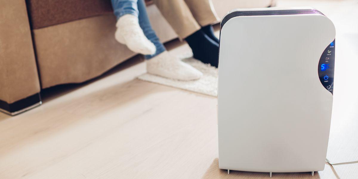 Do Air Purifiers Work An Expert Explains If Air Purifiers