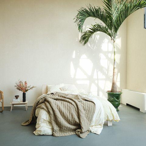 crisp sheets dekbed