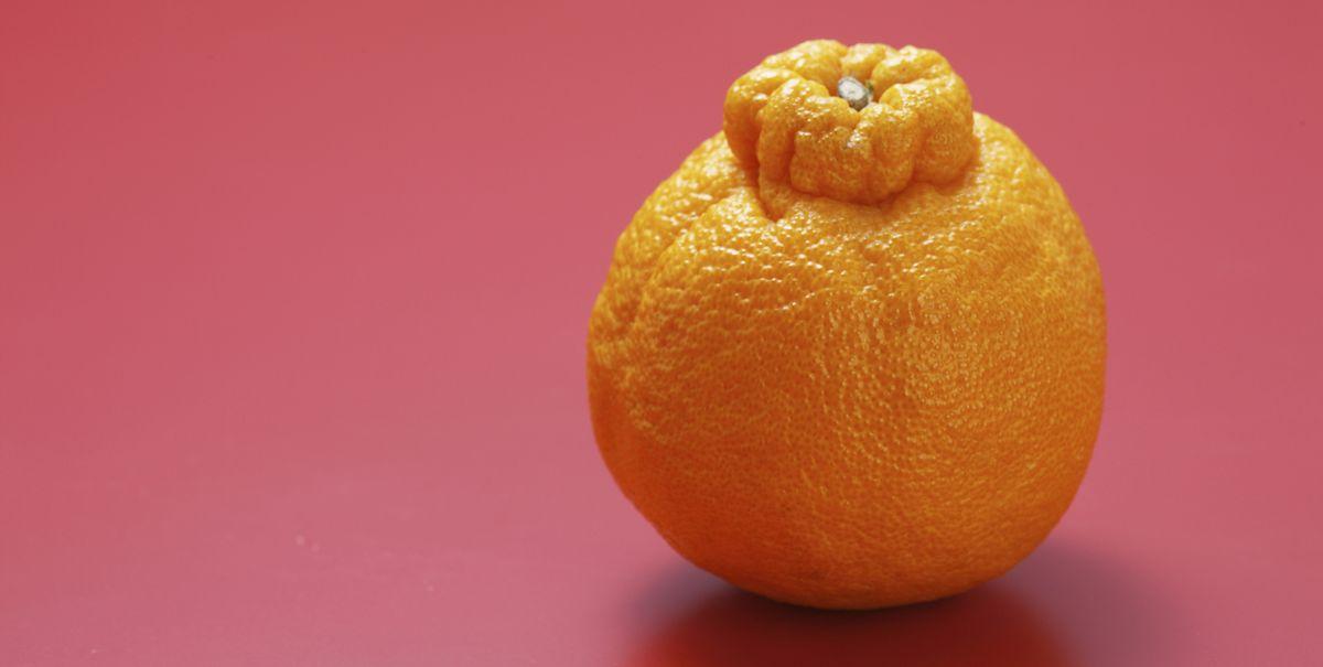 What Are Sumo Oranges Sumo Orange Season 2019