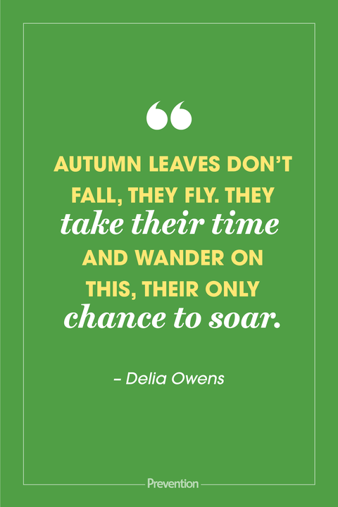 best quotes about autumn